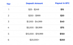 blockfi payout structure