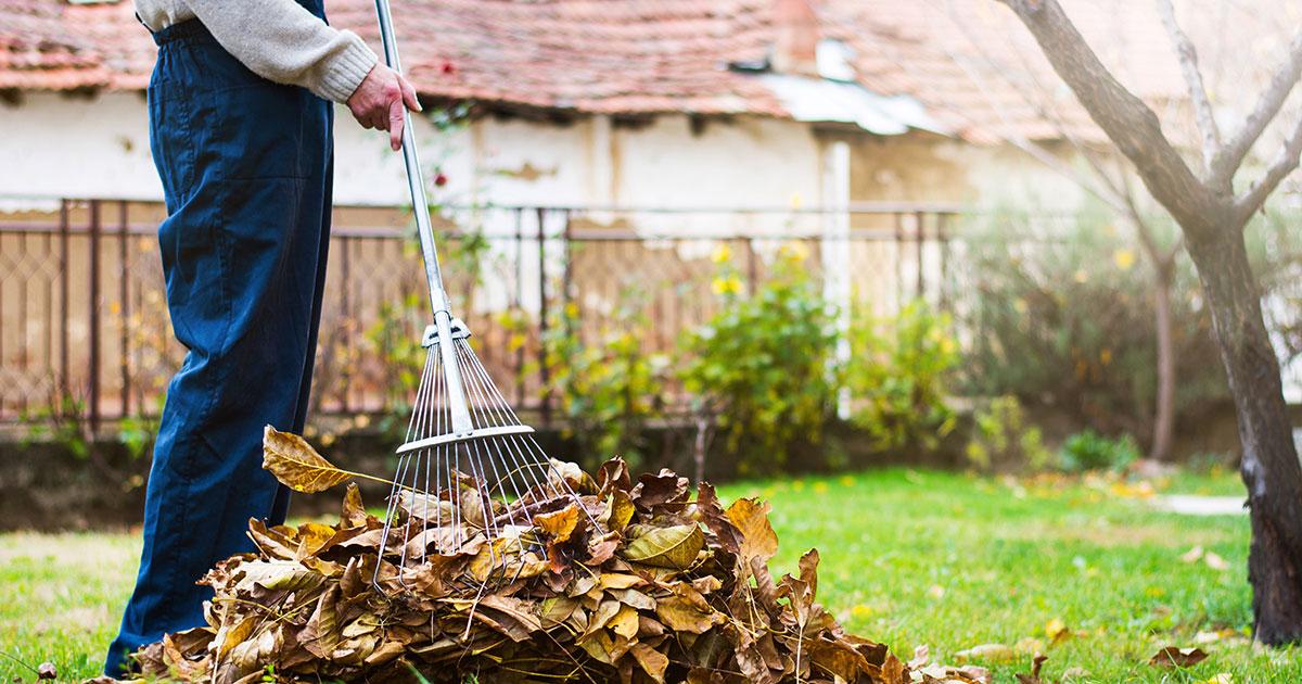 Do work around the yard