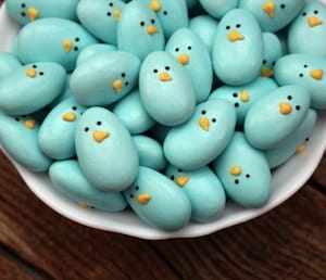 cute blue chick rocks
