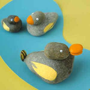 duck rocks