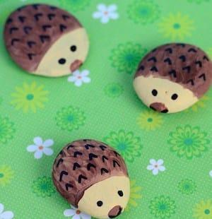 cute hedgehog rocks