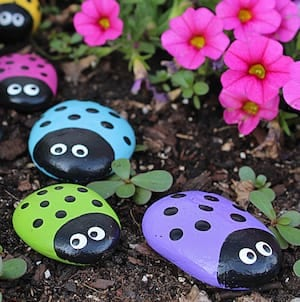 ladybug rocks 1