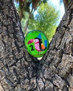 Toucan Tree Rock