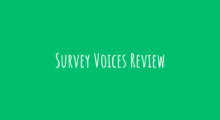 Survey Voices Review1
