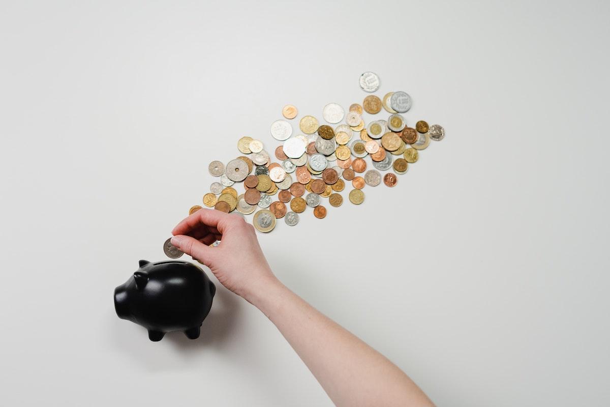 Little Vices Money saving